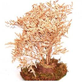 Árbol blanco
