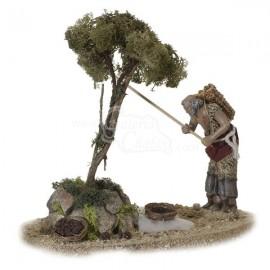 Pastor vareando olivo móvil