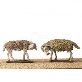 Corderos sueltos