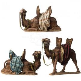 Grupo de tres camellos