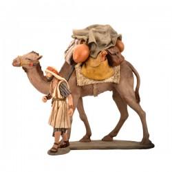 Camello con carga y paje