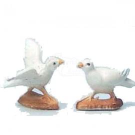 Cria de paloma