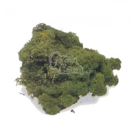 Bolsa de musgo natural verde teñido